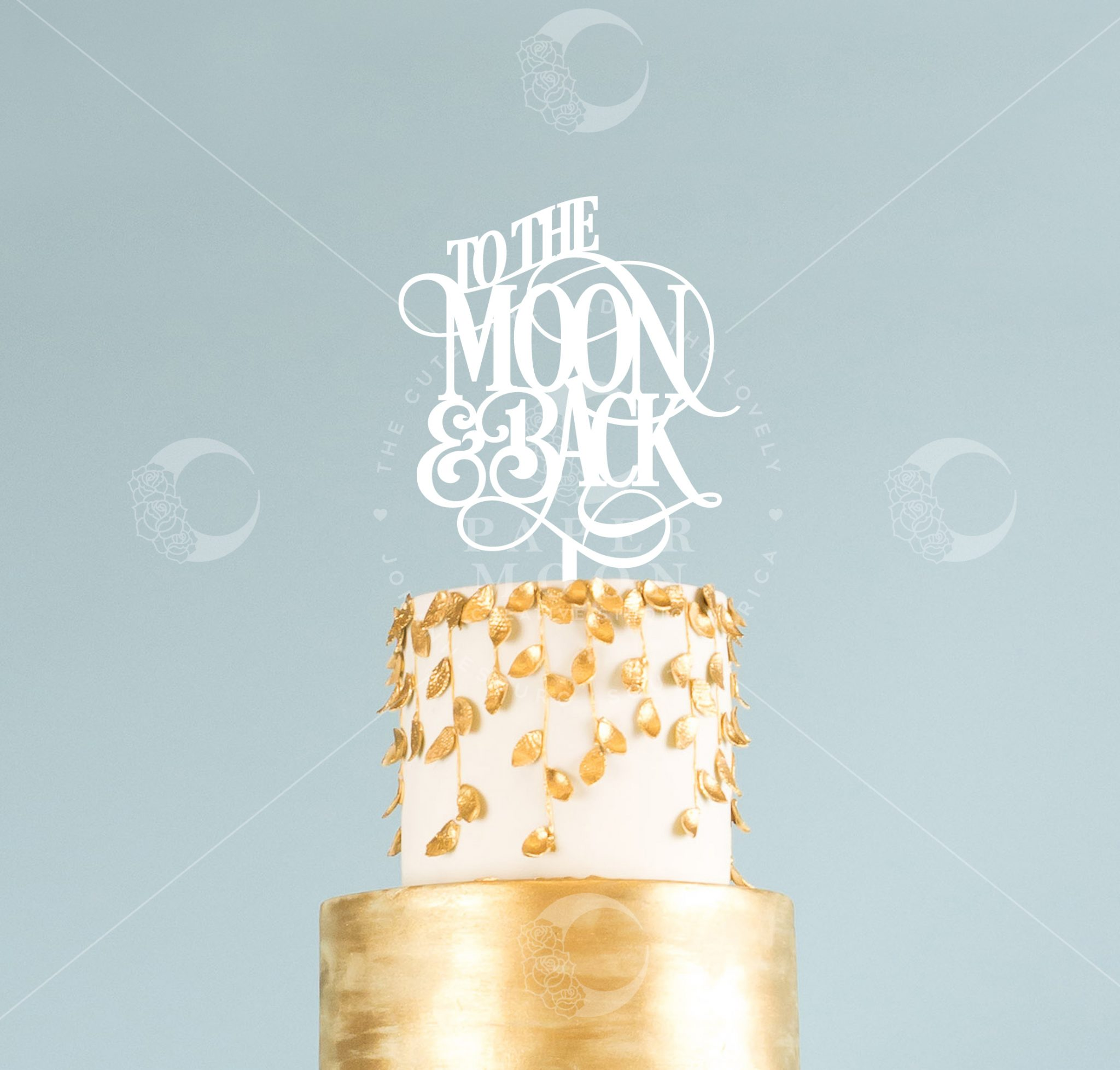 Silver To The Moon And Back Cake Toppers