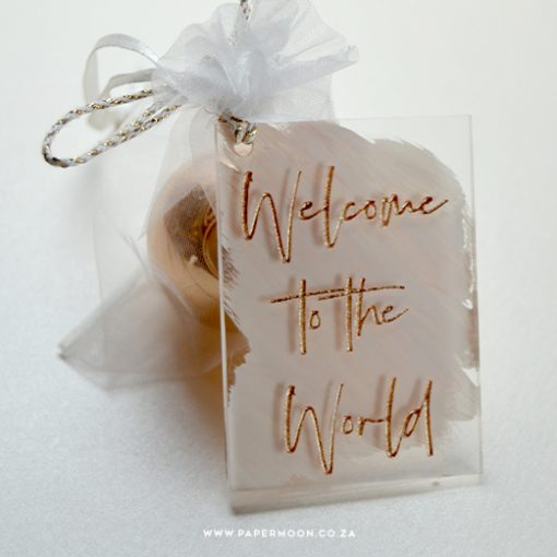 Welcome to the World Gift Tag